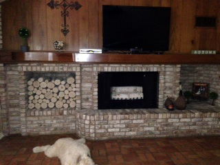 Decorative Birch Logs in Fireplace and Wood Pile