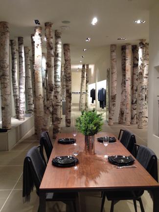Birch logs in Calvin Klein store