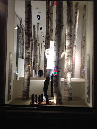 Calvin Klein window display using birch logs